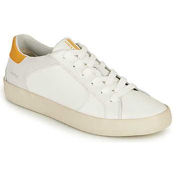 Shoes Men Low top trainers Geox U WARLEY A White