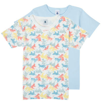 Clothing Boy Short-sleeved t-shirts Petit Bateau MANUR Multicolour