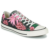 Shoes Women Low top trainers Converse CHUCK TAYLOR ALL STAR JUNGLE SCENE OX Pink / Green