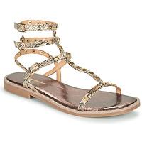 Shoes Women Sandals Les Tropéziennes par M Belarbi COROL Beige / Python