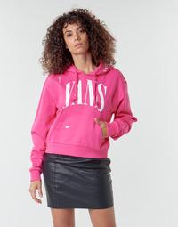 Clothing Women Sweaters Vans WM KAYE CROP HOODIE Pink