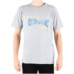 Clothing Men Short-sleeved t-shirts Quiksilver EQYZT00001SZNH Grey
