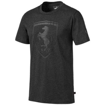 Clothing Men Short-sleeved t-shirts Puma Ferrari Big Shield Tee Graphite