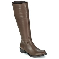 Shoes Women High boots Betty London NORMANDIA Brown