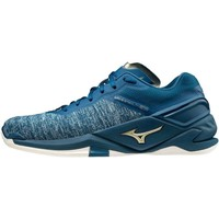 Shoes Men Indoor sports trainers Mizuno Wave Stealth Neo Blue