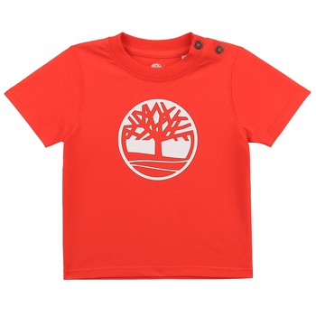 Clothing Boy Short-sleeved t-shirts Timberland SITTA Red