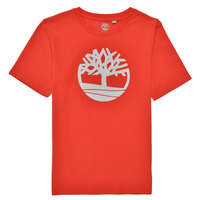 Clothing Boy Short-sleeved t-shirts Timberland LOLLA Red