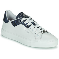 Shoes Men Low top trainers Roberto Cavalli KALE White / Blue