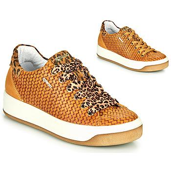 Shoes Women Low top trainers IgI&CO SHOUHAI Ocre tan