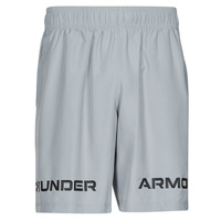 Clothing Men Shorts / Bermudas Under Armour UA WOVEN GRAPHIC WM SHORT Grey