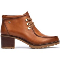 Shoes Women Ankle boots Pikolinos PLAIN ANKLE BOOTS W7H-8512 BRANDY