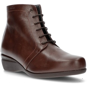 Shoes Women Ankle boots Dtorres OTTAWA LACE BOOTS TOBACCO