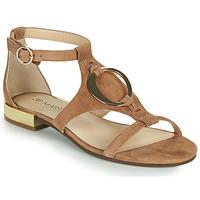 Shoes Women Sandals JB Martin BOCCIA Brown
