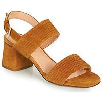 Shoes Women Sandals Fericelli MARRAK Camel