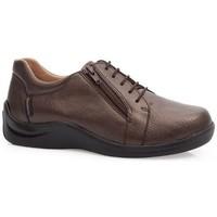Shoes Women Derby Shoes & Brogues Calzamedi SHOES  DIABETIC 0749 BROWN