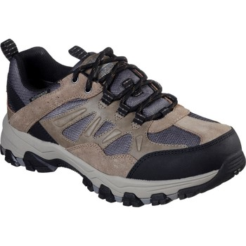 Shoes Men Walking shoes Skechers 66275-TAN-06 Selmen Enago Tan
