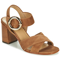 Shoes Women Sandals JB Martin 1NICKY Brown