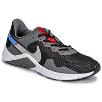 Shoes Men Multisport shoes Nike LEGEND ESSENTIAL 2 Grey / Blue