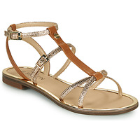 Shoes Women Sandals JB Martin 1GRIOTTES Brown