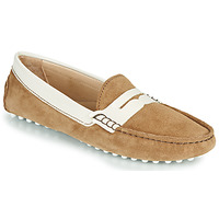 Shoes Women Loafers JB Martin 1TABATA Brown