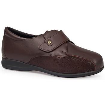 Shoes Women Derby Shoes & Brogues Calzamedi SHOES  DIABETIC 0708 BROWN