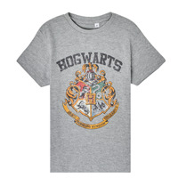 Clothing Children Short-sleeved t-shirts TEAM HEROES  HARRY POTTER Grey