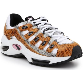 Shoes Low top trainers Puma Cell Endura Animal Kingdom 370926-01 Multicolor