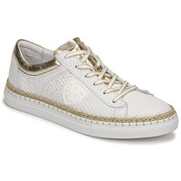 Shoes Women Low top trainers Philippe Morvan GOOD V2 White / Gold
