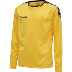 Clothing Children Long sleeved tee-shirts Hummel Maillot  enfant manches longues hmlAUTHENTIC HML jaune/noir