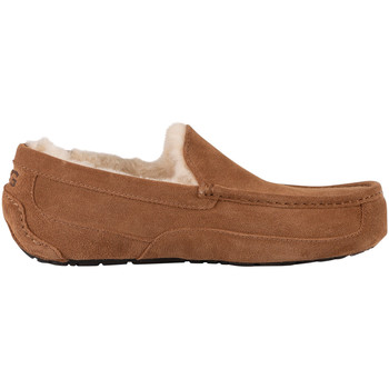 Shoes Men Slippers UGG Ascot Suede Slippers beige