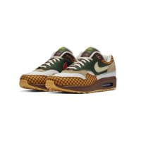 Shoes Low top trainers Nike Air Max 1 Susan