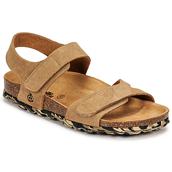 Shoes Boy Sandals Citrouille et Compagnie BELLI JOE Beige