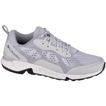 Shoes Men Fitness / Training Columbia Vitesse Grey
