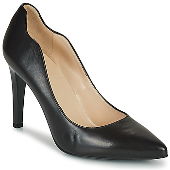 Shoes Women Heels NeroGiardini BASTI Black