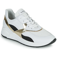 Shoes Women Low top trainers NeroGiardini FILOMENE White / Black / Gold