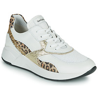 Shoes Women Low top trainers NeroGiardini FIDEL White / Leopard