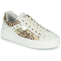 Shoes Women Low top trainers NeroGiardini MANO White / Leopard