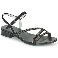 Shoes Women Sandals NeroGiardini TEDDY Black