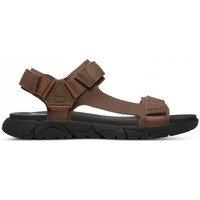 Shoes Men Sandals Timberland Windham Trail Brown