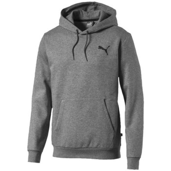 Clothing Men Sweaters Puma Essentials Hoody FL Grey