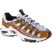 Shoes Men Low top trainers Puma Cell Endura Animal Kingdom White, Grey, Honey
