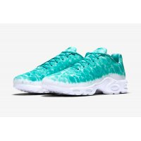 Shoes Low top trainers Nike Air Max Plus Gpx Swimming Pool Mineral Teal/White
