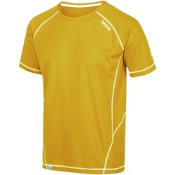 Clothing Men Short-sleeved t-shirts Regatta VIRDA II TShirt Yellow