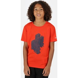 Clothing Children Short-sleeved t-shirts Regatta Kid's Alvardo V Graphic T-Shirt Orange Orange