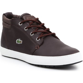 Shoes Women Mid boots Lacoste Apmthill Terra Hhi Spw Brown