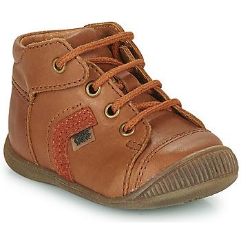 Shoes Boy Hi top trainers GBB GARY Brown