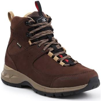Shoes Women Walking shoes Garmont Trekking shoes  Trail Beast MID GTX WMS 481208-615 brown
