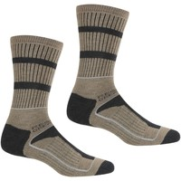 Shoe accessories Men Socks Regatta SAMARIS 3-Season Sock Black Dark Steel Brown Brown