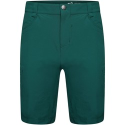 Clothing Men Shorts / Bermudas Dare 2b TUNED IN II Waterproof Technical Shorts Atlantic Blue Green Green