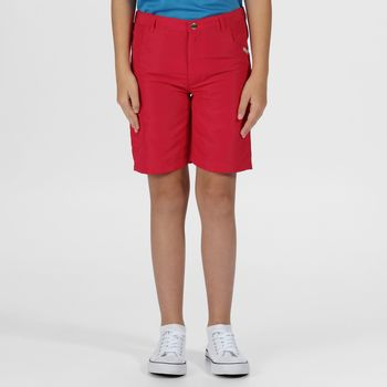 Clothing Children Shorts / Bermudas Regatta SORCER II Lightweight Shorts Ash Pink Pink